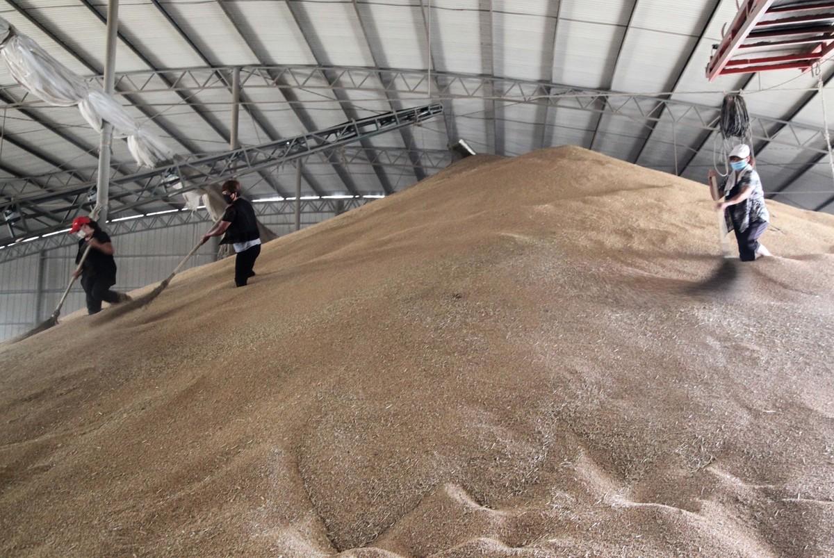 近日,中儲糧黑龍江分公司肇東直屬庫再次曝出貪腐新聞,加上最近南方暴雨造成大量農田被淹沒和沖毀,從而再次引發人們對大陸糧荒的擔憂。(大紀元)