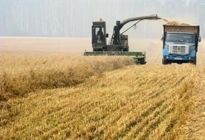 大陸增加進口百萬噸美國粟米