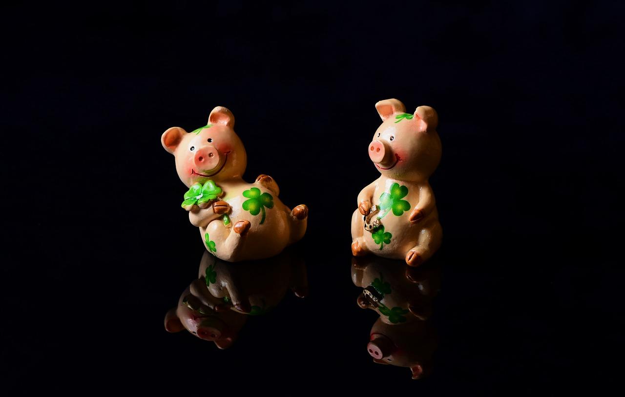 豬的諺語說智慧。豬年結善緣!諸事大吉!(pixabay)