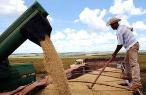 貿易戰升級 美將實施160億農業援助計劃