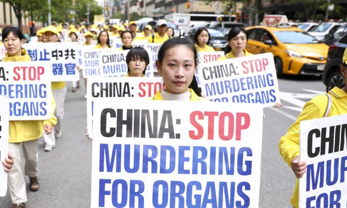 加拿大教授:中共對法輪功實施「冷種族滅絕」