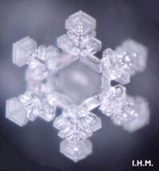 微觀世界新發現:水沸騰時會結冰
