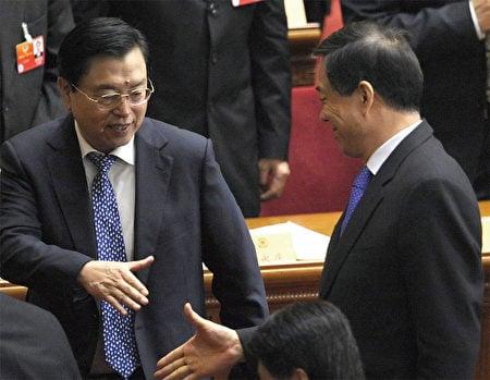 被外界認為屬於江澤民嫡系的張德江,2012年3月13日在兩會上還與薄熙來握手,15日即接掌了薄的職務。(AFP)