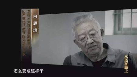 全國人大環資委原副主任、雲南省委原書記白恩培。(視像擷圖)