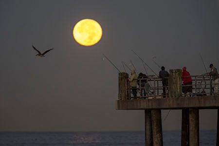 美國加州海邊上空的超級月亮。(David McNew/Getty Images)