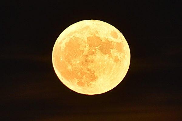 美國太空總署(NASA)表示,11月份的大滿月將不僅是2016年離地球最近的一次滿月,也是自1948年以來最近的滿月。(LOIC VENANCE/AFP/Getty Images)
