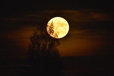 法國上空的超級月亮。(LOIC VENANCE/AFP/Getty Images)