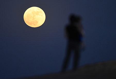 杜拜上空的超級月亮。(Tom Dulat/Getty Images)