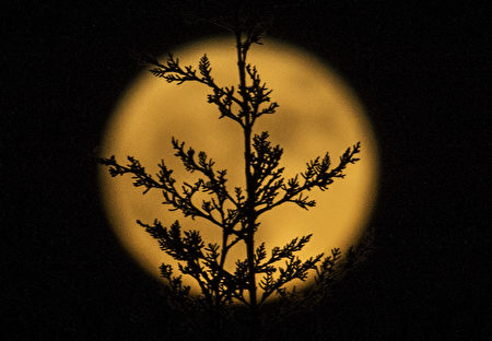 塞維利亞上空的超級月亮。(CRISTINA QUICLER/AFP/Getty Images)