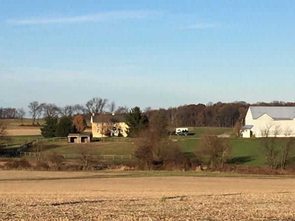 安恩家的農場。(安恩·科森提供)