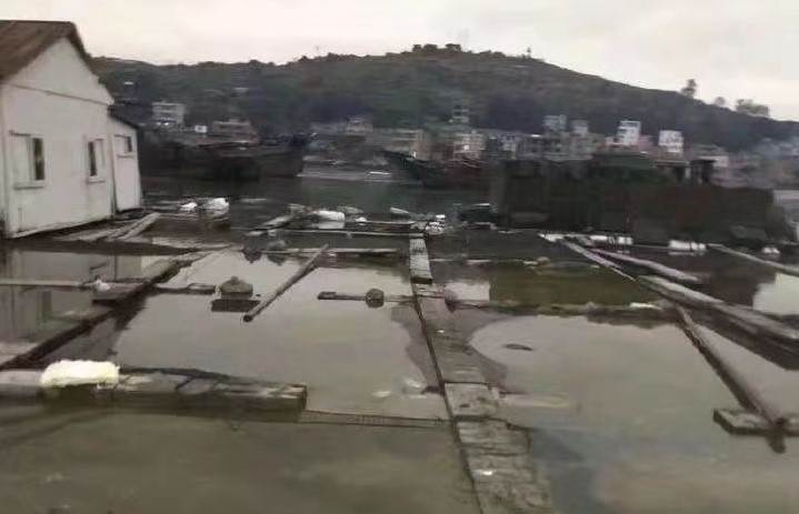 11月4日發生在福建泉州市泉港區碼頭的碳九洩漏事故,導致村民損失慘重。(受訪者提供)