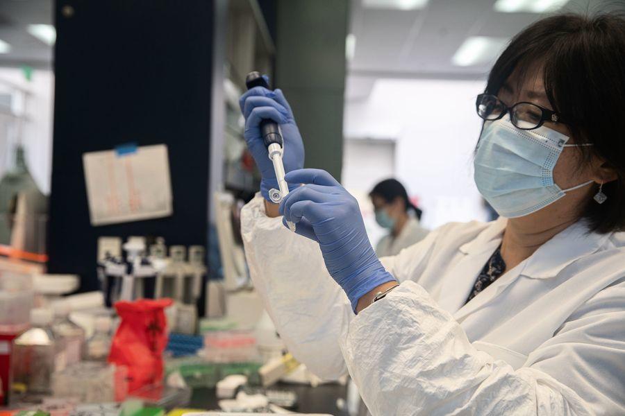 研究:加州變種病毒恐更具傳染性和致命性