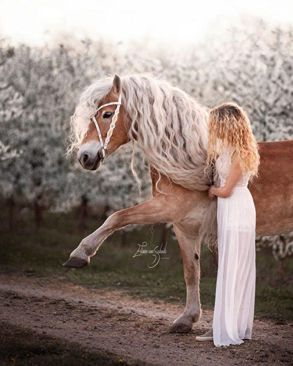 娜奧米和迷人的「長髮公主」馬。(由娜奧米‧貝克斯授權/Alina Nieman Photography提供)