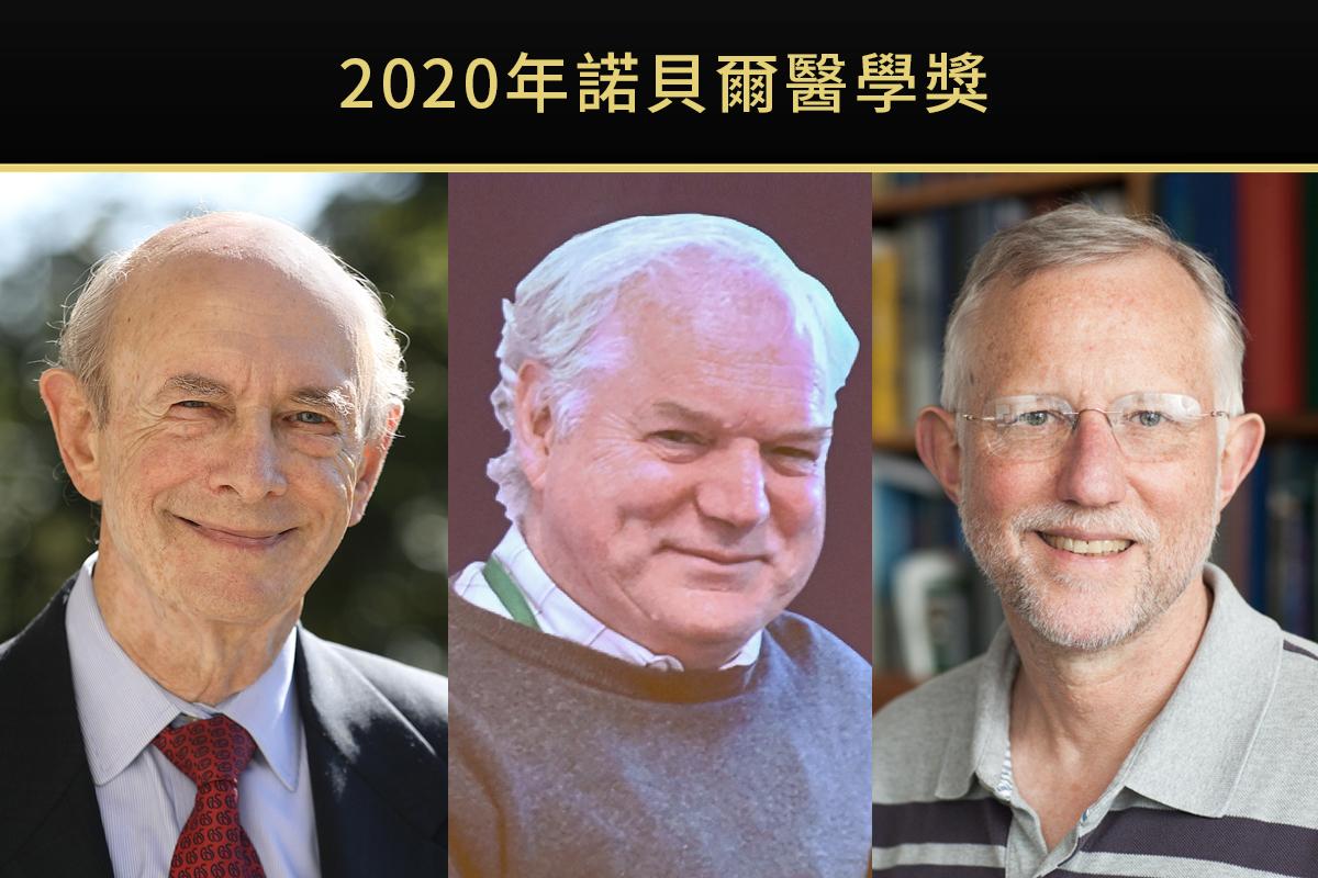 2020年諾貝爾醫學獎結果揭曉,獲獎者為三位發現C型肝炎病毒的學者:阿爾特(Harvey J. Alter)、霍頓(Michael Houghton)和萊斯(Charles M. Rice)。(美國國立衛生研究院、洛克菲勒大學提供/大紀元合成)