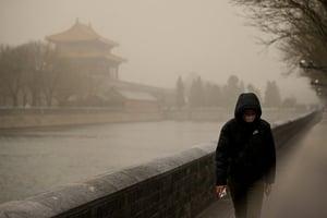 哈佛大學發現污染數值造假 中共氣候虛假承諾