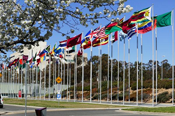 澳洲首都坎培拉格里芬湖(Lake Burley Griffin)南岸的萬國旗。(安平雅/大紀元)