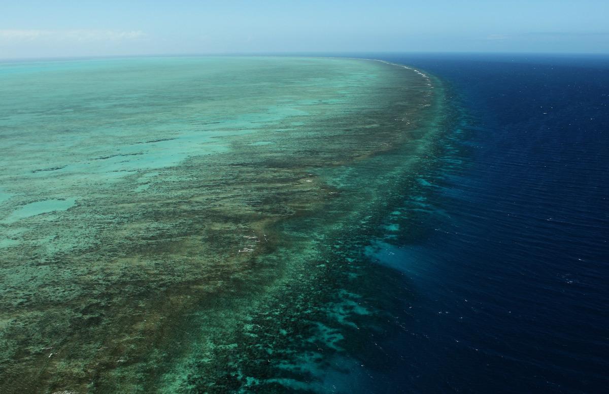 從空中俯瞰昆士蘭大堡礁(Great Barrier Reef)。(Phil Walter/Getty Images)