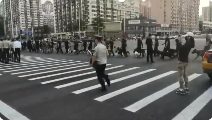 陸委會:中共百年黨慶高度統戰 台灣人勿參加