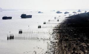 大陸再有環保志願者出事 失聯前拍片揭非法排污