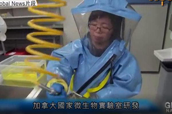 加拿大公共衛生局主管離任 或阻礙華裔科學家案件調查
