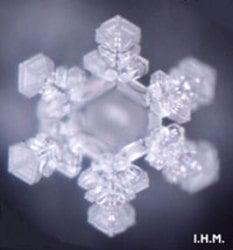 日本IHM江本勝博士等科學家曾發現,微觀下水能形成不同形狀的結晶。圖為:為水播放聖誕歌曲「平安夜」之後,形成的水結晶。(大紀元)