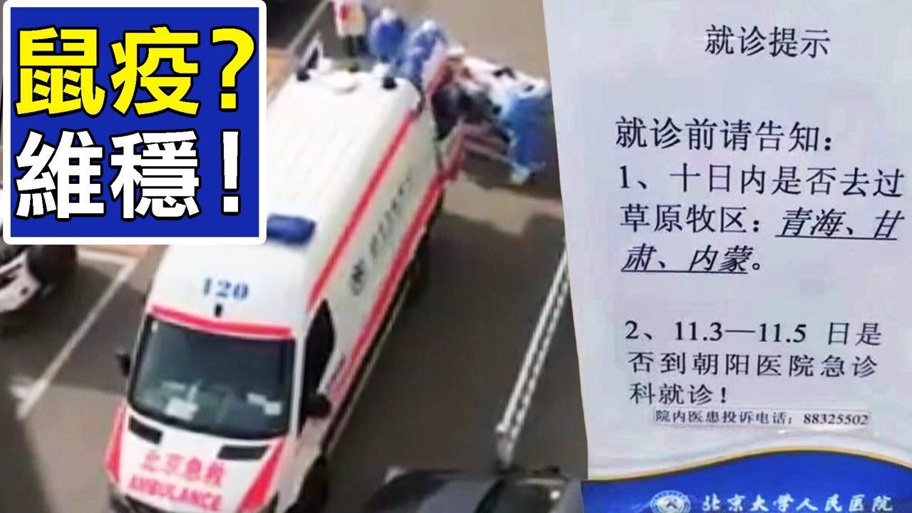 中國北方驚現鼠疫,最致命是甚麼?(新唐人合成)