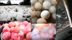 【現場影片】山東重慶降冰雹 有的大如雞蛋