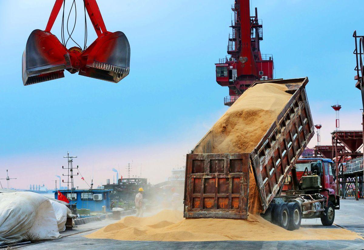 2018年8月6日,一輛卡車在中國江蘇省南通市的一個港口卸下從巴西進口的大豆製成的動物飼料。(AFP/Getty Images)