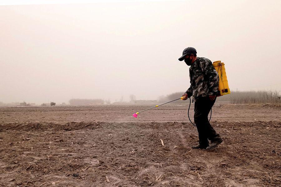 全球有64%農地遭農藥污染 中國最嚴重