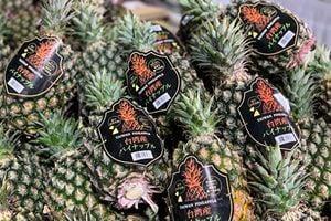 日挺台菠蘿還想捐錢 農委會:多買就好