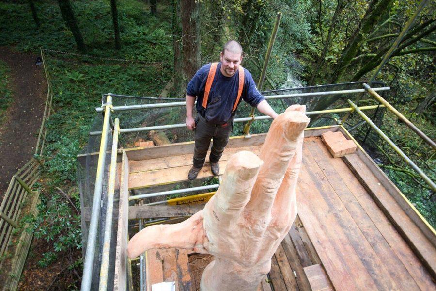 風暴中威爾士最高樹遭毀 英國男賦予其新生命