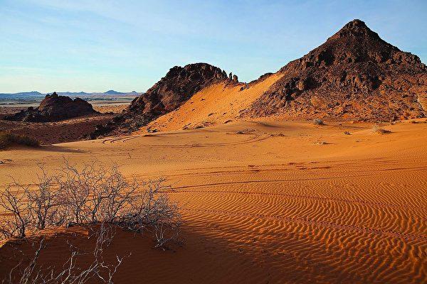 沙特阿拉伯的內夫得沙漠(Nefud Desert)。(CHARLES T.G. CLARKE/維基百科)