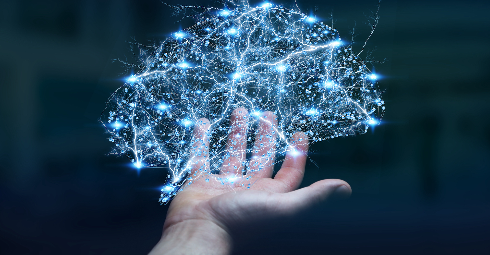 大腦神經元示意圖。(ShutterStock)