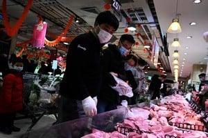 大陸生豬價格下跌近六成 豬企或已全面虧損