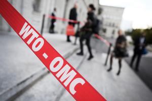 市場經濟地位之爭 WTO裁決可能不利中方
