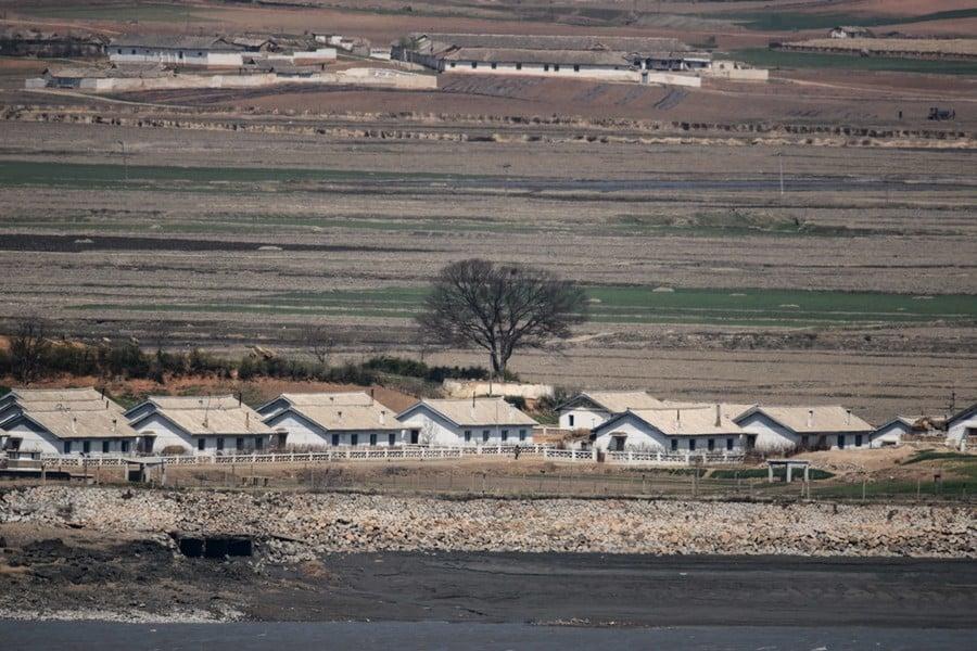 三方面曝光北韓在群眾中打造領袖個人崇拜