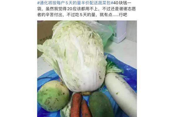 【一線採訪】通化封樓戶:15天送1次菜