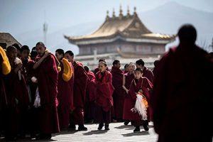 人權組織:中共訓練西藏僧侶當「啦啦隊」