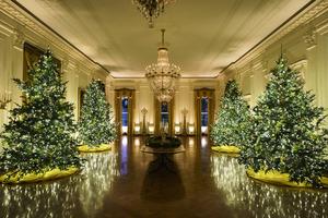 2020年白宮聖誕主題:美麗的美國