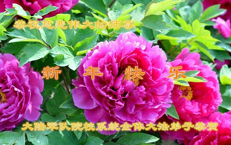 大陸軍隊院校系統全體大法弟子恭祝李洪志大師新年快樂!(明慧網)