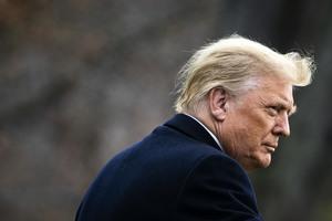 特朗普簽署備忘錄 阻止安提法成員入境美國