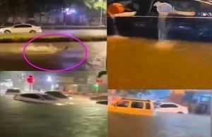 河南濮陽暴雨 市區嚴重積水 開車如開船【影片】
