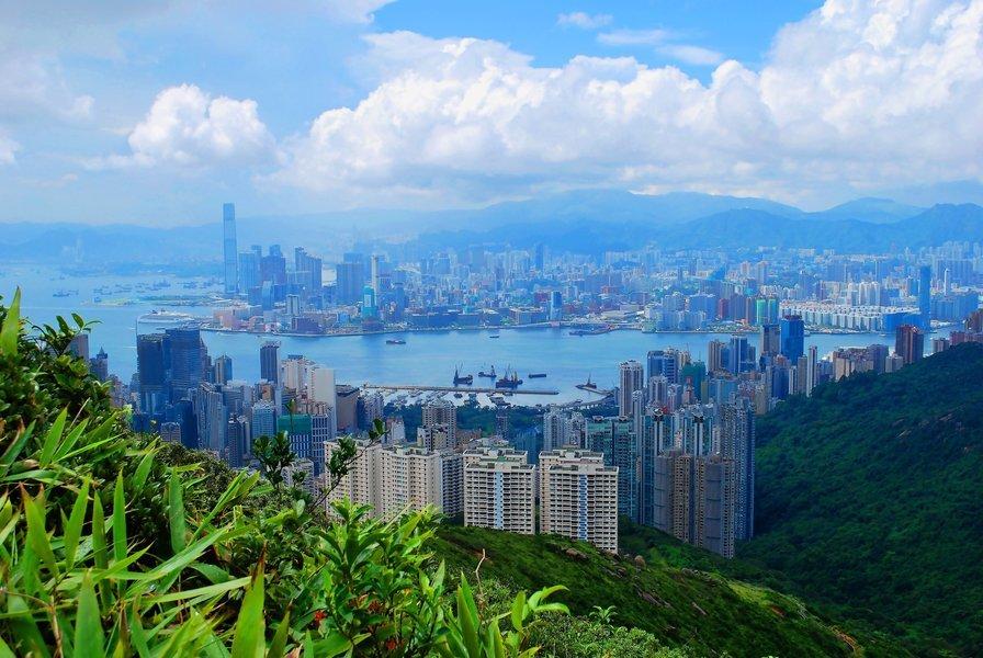 香港美商會:逾四成受訪公司看衰香港前景