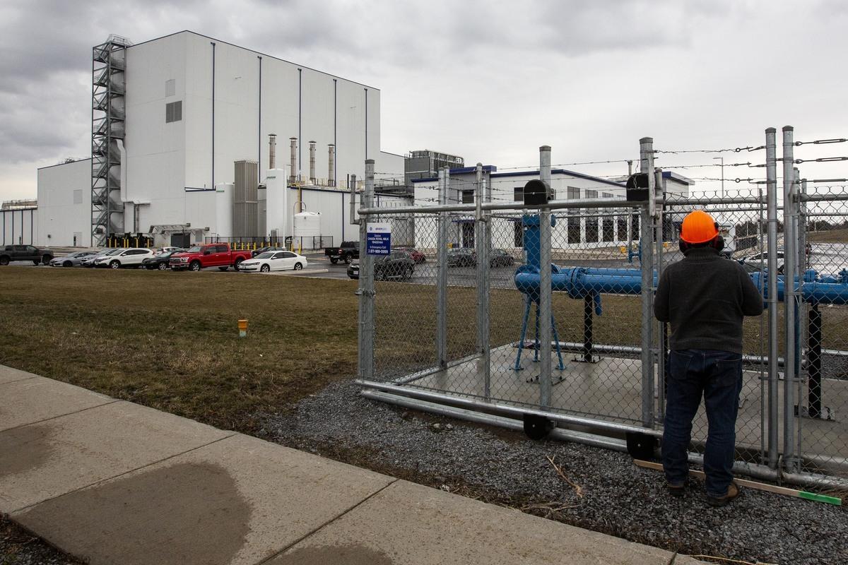 2016年,飛鶴乳業公司宣佈在安省金斯頓(Kingston)建奶粉工廠——加拿大王家奶粉廠(Canada Royal Milk)。因受傷或患病而缺勤的比率,比安省其它食品製造商的類似工作場所,員工缺勤率高了4倍。(加通社)