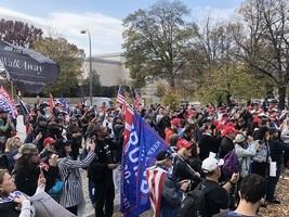 左媒謊言觸動民主黨人脫離 轉向支持特朗普