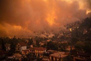 意大利高溫破紀錄 歐洲多國面臨火災威脅