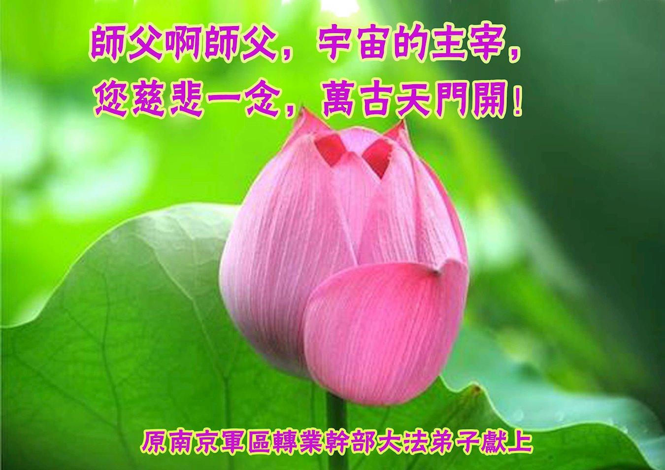 原南京軍區轉業幹部恭祝李洪志大師新年快樂!(明慧網)