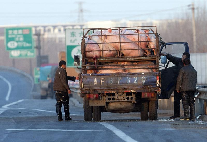 今年疫情爆發之後,「罰款經濟」的情況更為嚴重。圖為,北京一高速公路一景。(STR/AFP/Getty Images)