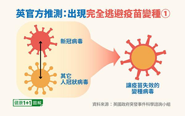 中共病毒變種可能性:抗原轉移(antigenic shift),如與其他人冠狀病毒結合。(健康1+1/大紀元)