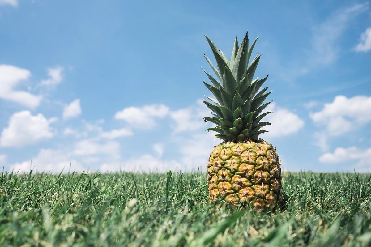 2021年2月26日,中共無預警宣佈暫停進口台灣菠蘿(鳳梨),引發國際關注。一名美國智囊學者回應說,鳳梨酥和澳洲酒品搭配,是自由的滋味。(Pixabay)